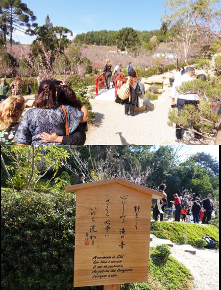 日本庭園.png