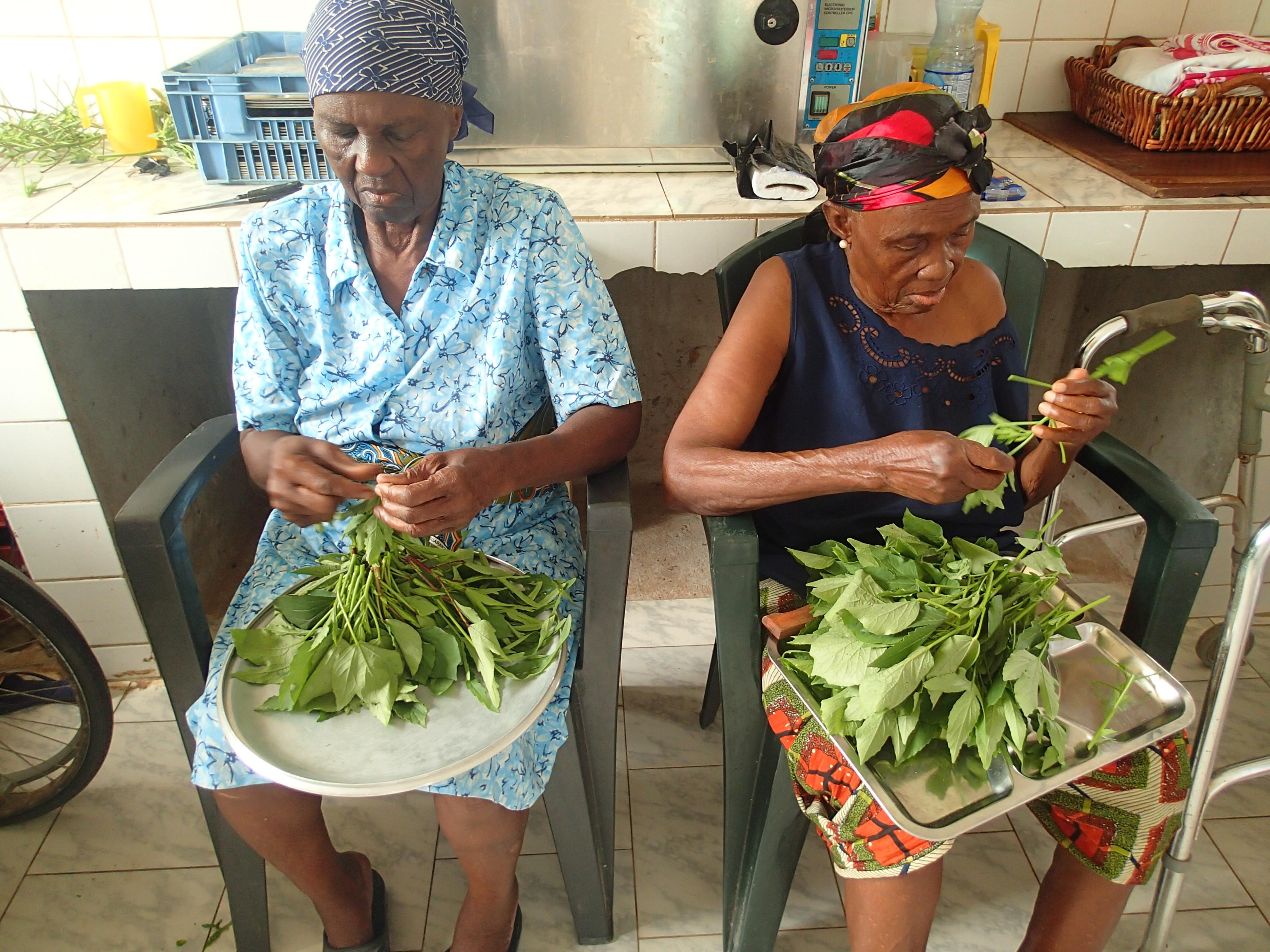 ガボン野菜でガボン料理作り