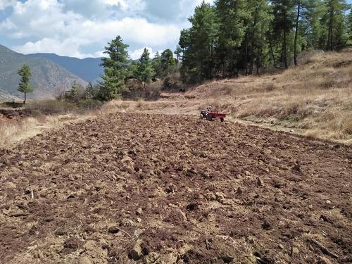 肥料散布3.jpg
