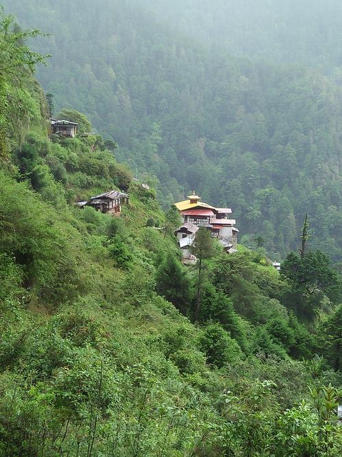 山からの寺.jpg