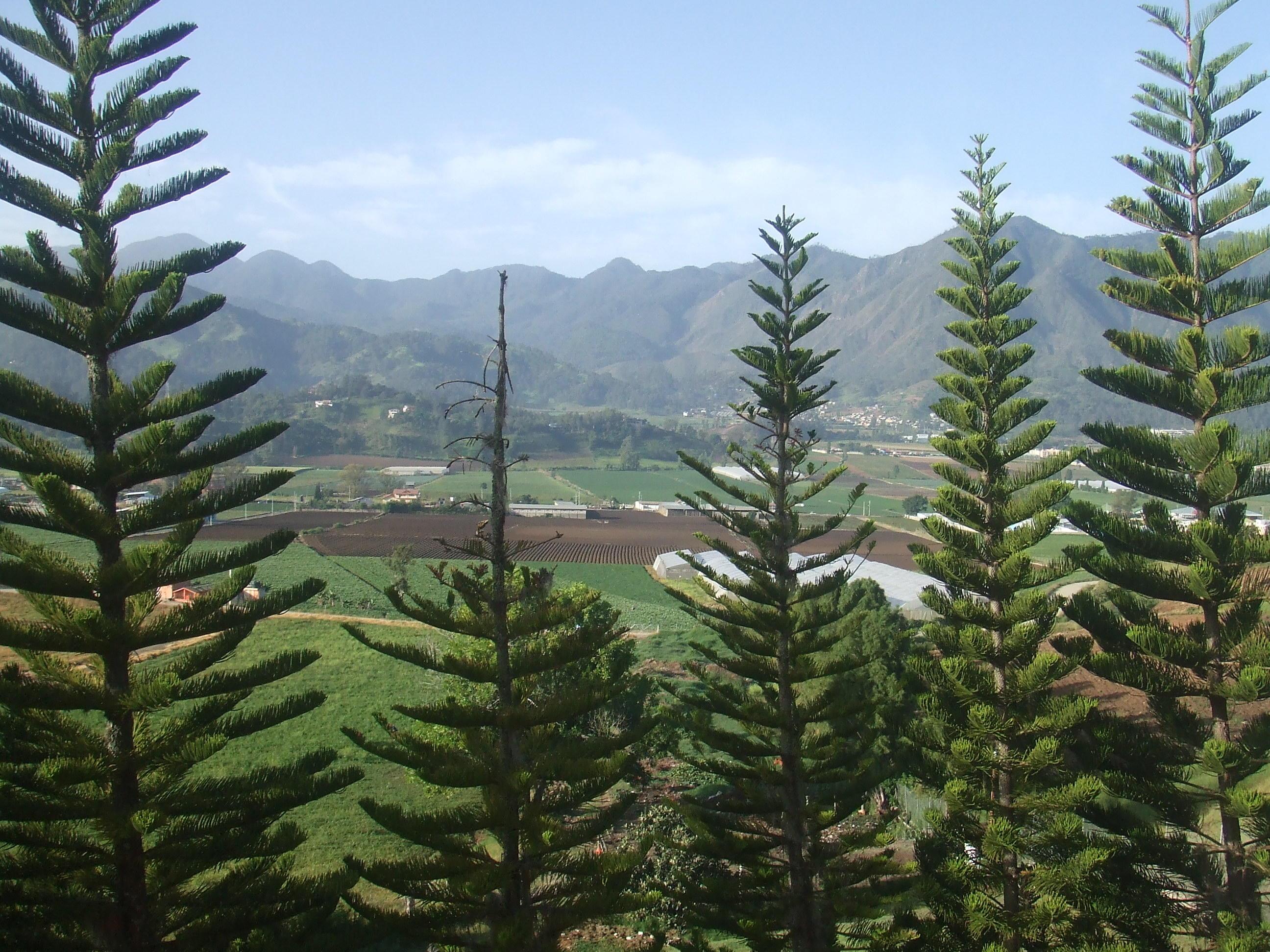 ドミニカ共和国の観光地、丘陵地編